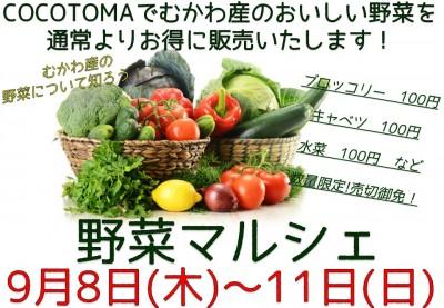 9/8~9/11 野菜マルシェを行います!