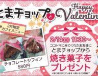2/14㈰ とまチョップとHappy Valentine(⋈◍>◡<◍)。✧♡
